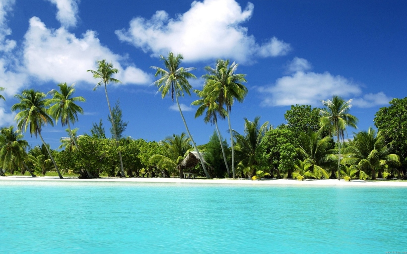 6905429-tropical-beach-paradise